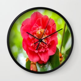 The Lost Gardens of Heligan - Red Camellia Wall Clock
