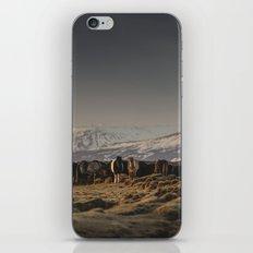 Icelandic Horses I iPhone & iPod Skin