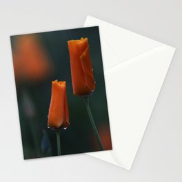 California Poppies at Dusk Stationery Cards