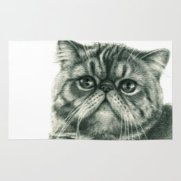 Shorthair Persan cat G088 Rug