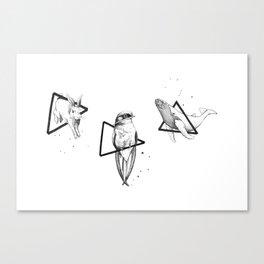 Constellation II Canvas Print