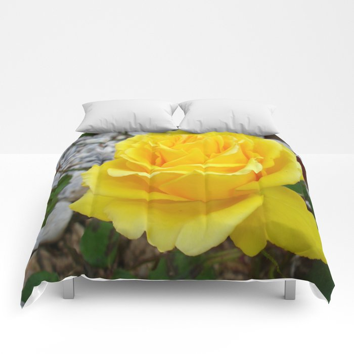 Beautiful Yellow Rose with Natural Garden Background Comforters