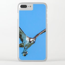 Osprey Uses a Lure to Catch a Fish Clear iPhone Case