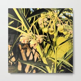 Pufferfish Milkweed & Bee Fresco Metal Print