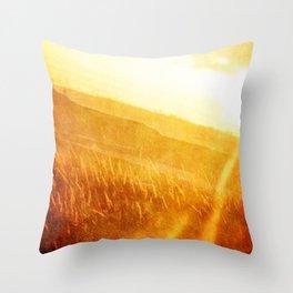 Through gold-woven dreams Throw Pillow