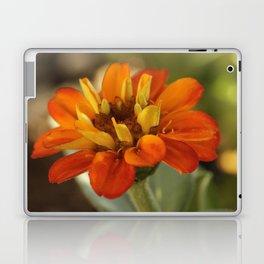 Marigold Flower Laptop & iPad Skin