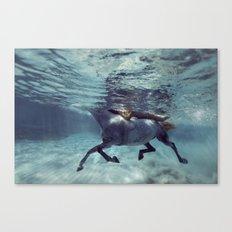 131016-8876 Canvas Print