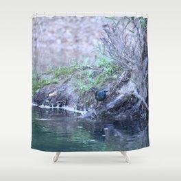 Black Bird At Water's Edge Shower Curtain