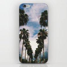 Palms Of Venice iPhone & iPod Skin