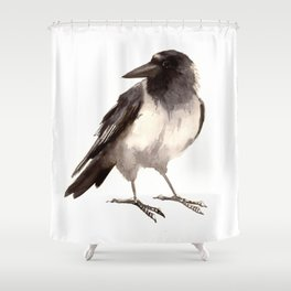 Crow decor, hooded crow art Shower Curtain