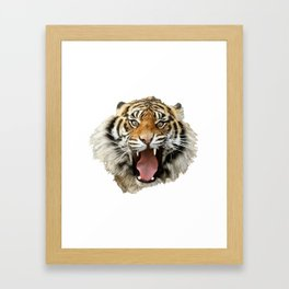 Crazy Tiger Framed Art Print