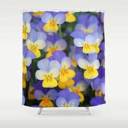 Yellow and Blue Flower Pansies closeup of colorful pansy flower  Shower Curtain