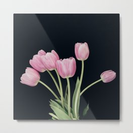 Pink Tulip Still-Life Metal Print