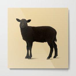 Black Lamb // Orange Metal Print