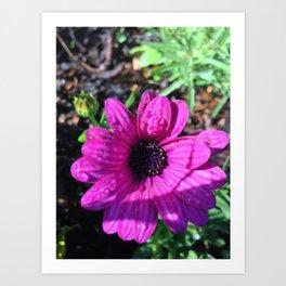 Summer Purple Flower Art Print