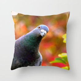 Cute Curious Pigeon Throw Pillow