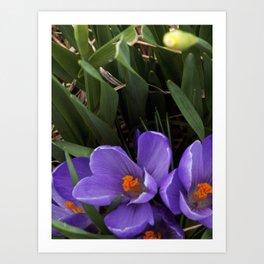 Purple and Orange Art Print