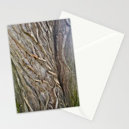 Magical Idea Photography Stationery Cards