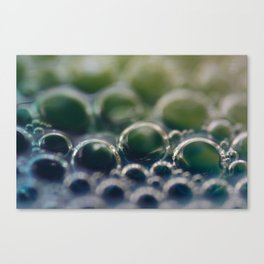 Green & Blue Droplets Canvas Print