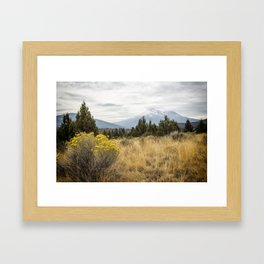 Taking the Scenic Route Framed Art Print