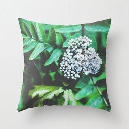 Sorbus aucuparia Throw Pillow
