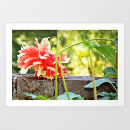WallFlower Art Print