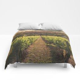 Vineyard Comforters