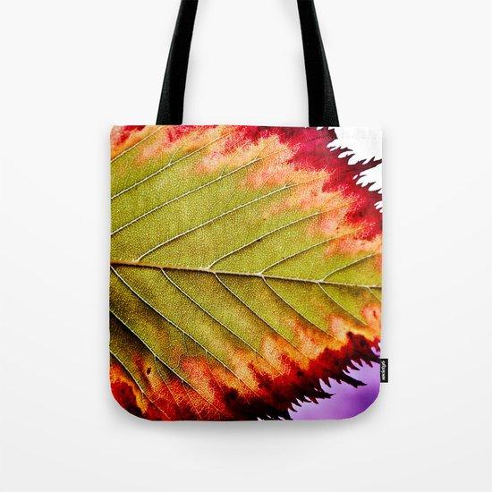 Fall Splendor Tote Bag