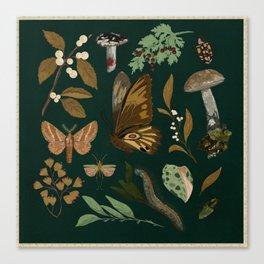Green Natural Explorer Canvas Print