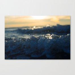 Waterlogged Canvas Print