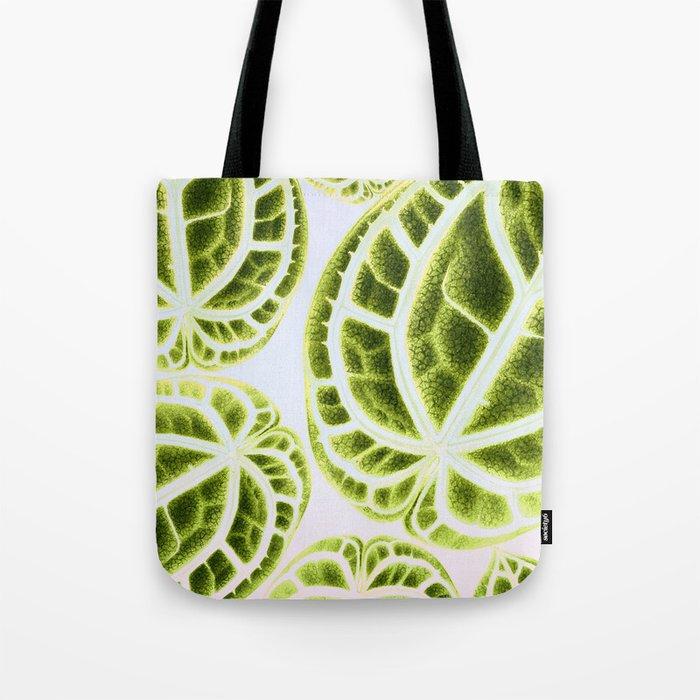 houseplant green Tote Bag