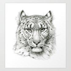 Snow Leopard SK040 Art Print