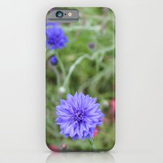 Blue Star iPhone 6s Slim Case