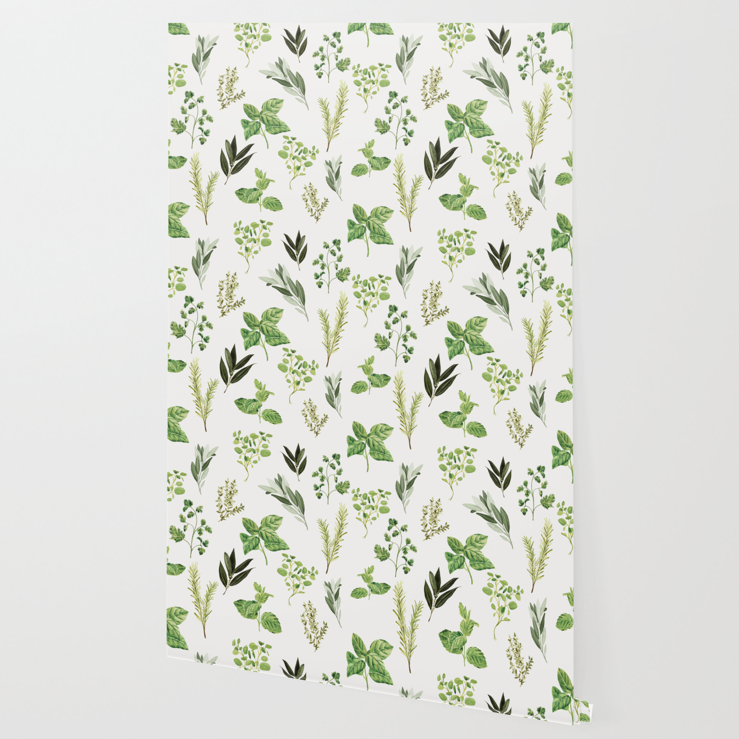 Delicate Herb Illustrations Wallpaper By Shealeenlouise Society6