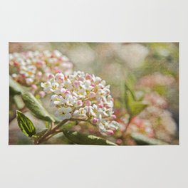 Vintage Inspired Pink and White Woodland Flowers with French Script Rug