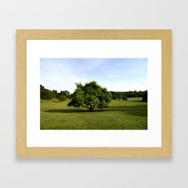 A View From Kenwood House Framed Art Print
