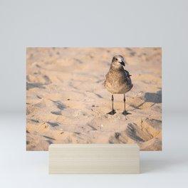 Sand Bird Mini Art Print