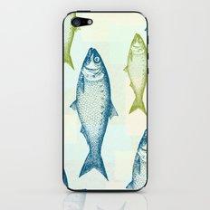Vintage Fish iPhone & iPod Skin