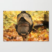 turkey Canvas Prints featuring Turkey  by MTonn