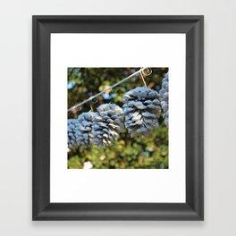 Snow Cones, No. II Framed Art Print