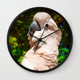 The Flying Penguin Wall Clock