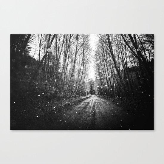 Follow the Fireflies Canvas Print
