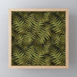 Among the ferns in the forest (military green) Framed Mini Art Print