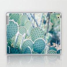 Paddle Cactus Laptop & iPad Skin