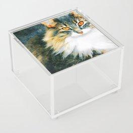 Cat with Orange Eyes Acrylic Box