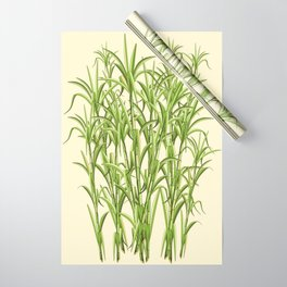 Sugar Cane Exotic Plant Pattern Wrapping Paper