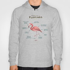 Anatomy of a Flamingo Hoody