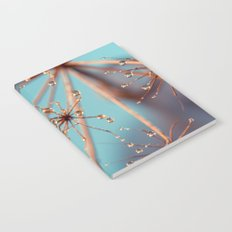 Queen Anne's Lace in Blue Notebook