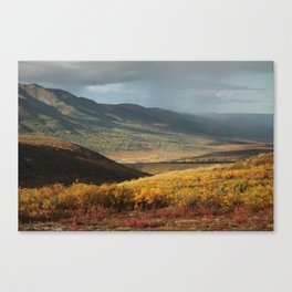 Gift of Golden Sun Canvas Print
