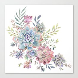 succulent watercolor 6 Canvas Print